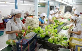 Export value of fruit and vegetables increases