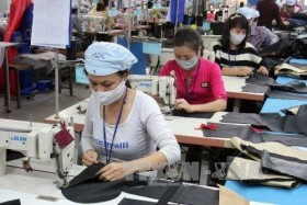 Find ways to step up EU exports, VN firms urged