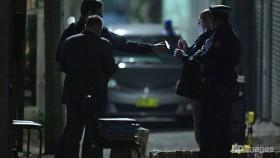 Australia 'disrupts terror plot' to bring down airplane