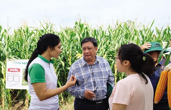 tech can improve competitiveness of vietnams corn