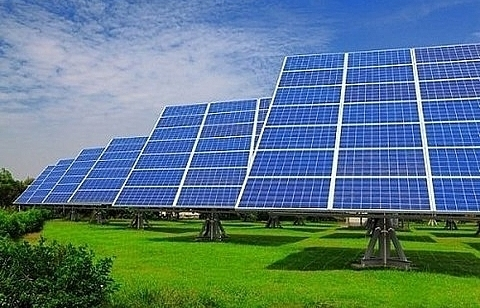 vnd5 trillion solar power plant to be built in ninh thuan