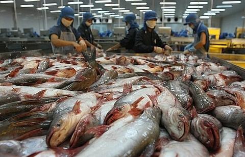 mekong delta enterprises upbeat
