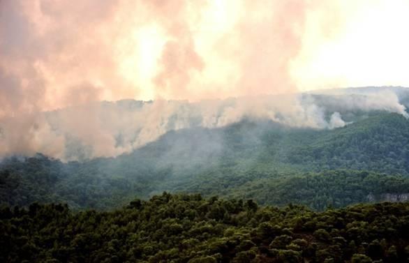 heatwave grips northern europe as greece burns