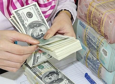 dollardong exchange rate cools down