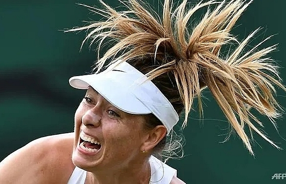 sharapova quits wimbledon in pain but vows to fight on
