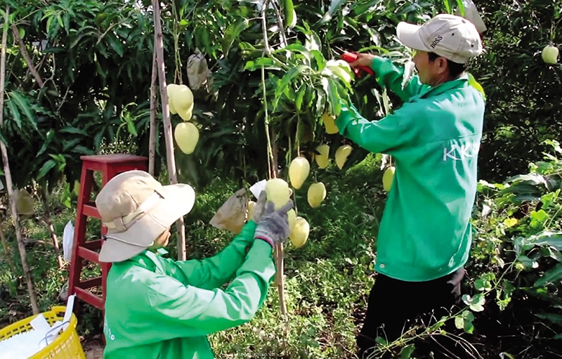 US clamour for Vietnamese produce