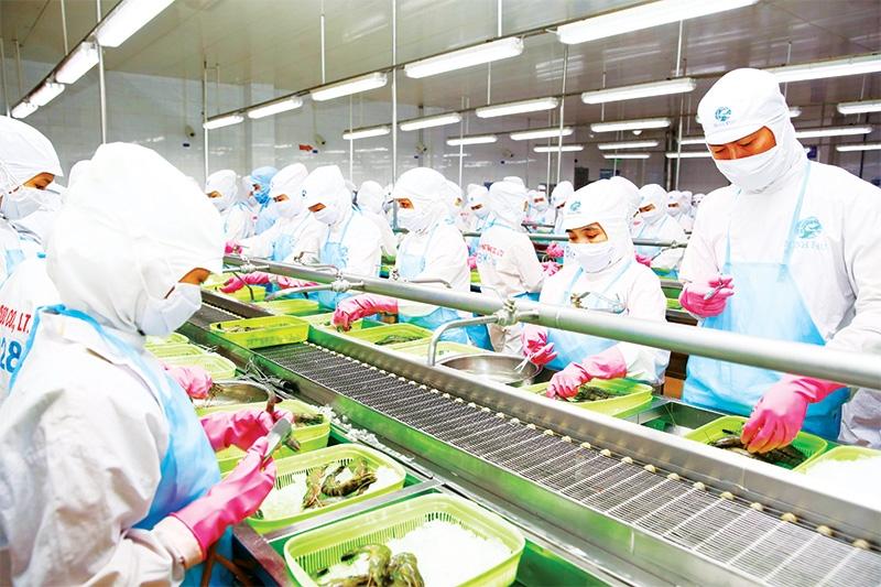 the dynamics of vietnams ma market