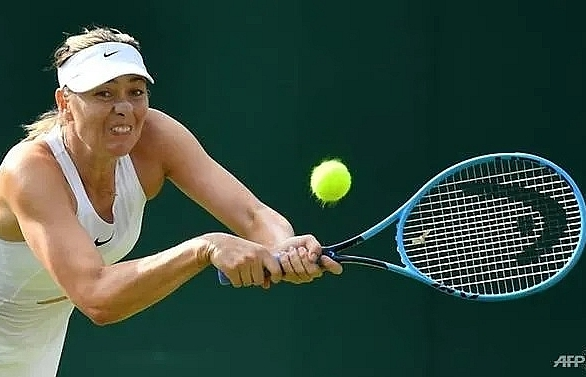 sharapova venus get wildcards for wta cincinnati event