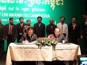 fertilizer giant opens branch in cambodia