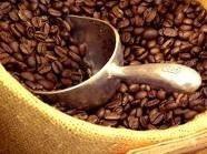 nestle announced 270 million new coffee factory in vietnam