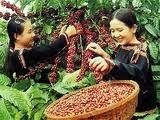 farmers form alliances to boost profits
