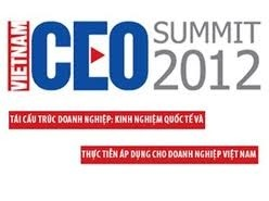 vietnam ceo summit convened in hn