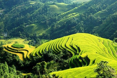 sapa among the top 10 most magical places in asia