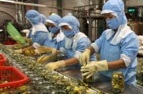 Viet Nam to top in GDP gain from TPP, AEC
