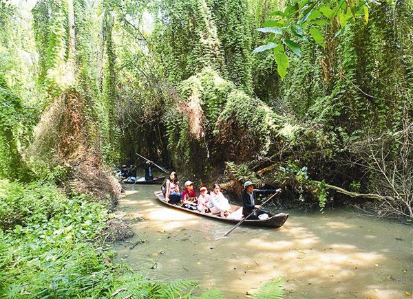 Mekong Delta, Xeo Quyt Tourist Area, cajeput forests, Vietnam economy, Vietnamnet bridge, English news about Vietnam, Vietnam news, news about Vietnam, English news, Vietnamnet news, latest news on Vietnam, Vietnam
