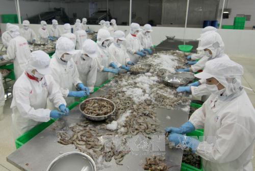 remove bottlenecks in aquatic exports to china vasep