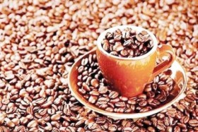 Indian company builds instant coffee plant