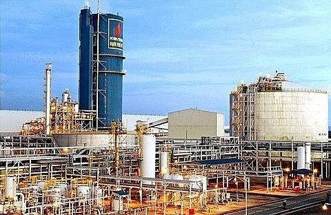 petrovietnam considers merger of two biggest fertiliser firms