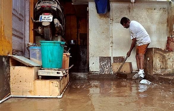 snake alert issued in indias flood hit kerala