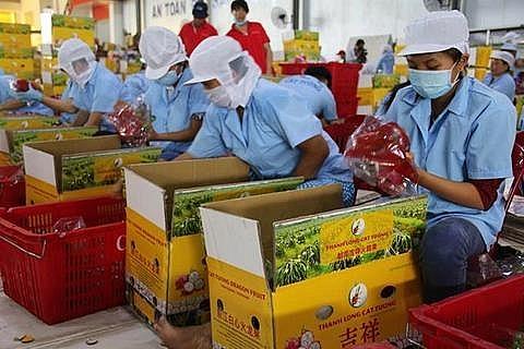 e commerce key for farm exporters