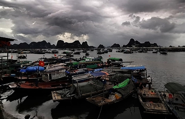 third typhoon to hit hai phong quang ninh on friday