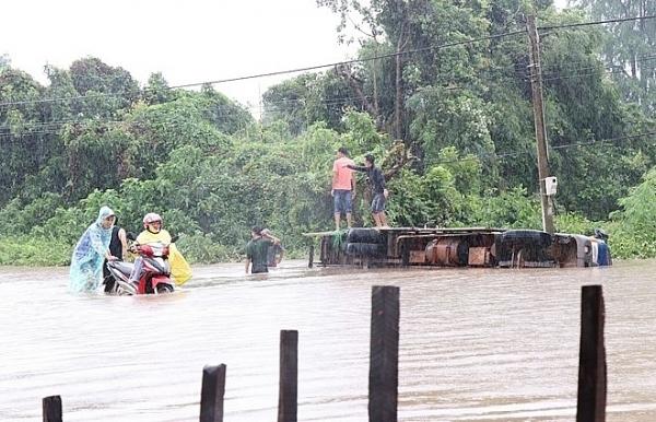 heavy rain flooding cause losses in dak lak province