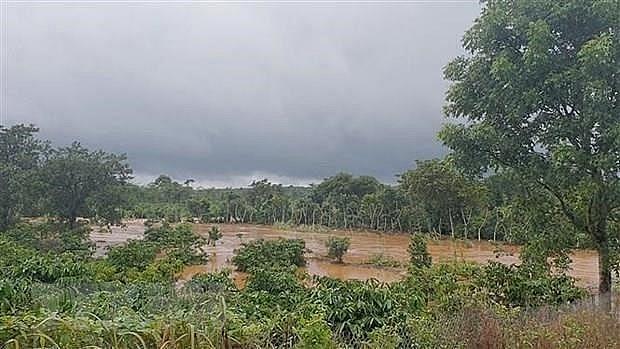 heavy rains cause 5 deaths in dak nong province