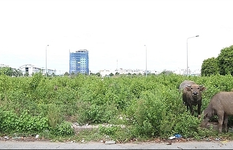 investors eye land plots in underdeveloped provinces