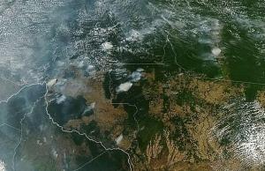 brazils bolsonaro blames amazon fires on ngos as twitter erupts