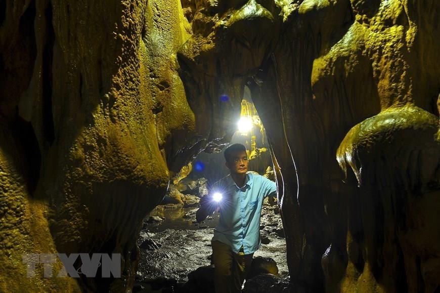 van trinh cave in ninh binh province