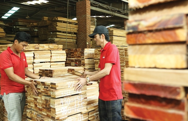 vietnams plywood suppliers under scrutiny over practices