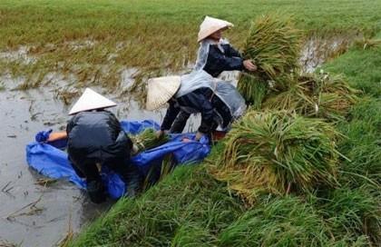 vietnam braces after storm lashes china