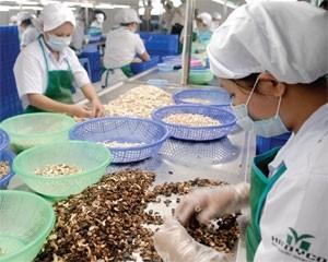 agriculture sector seeking investors