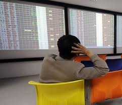 Foreign investors push up VN large-cap stocks
