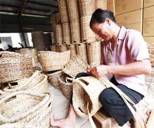 bamboo sector is ready to bend with the times