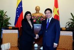 VN supports constitutional government of Venezuela