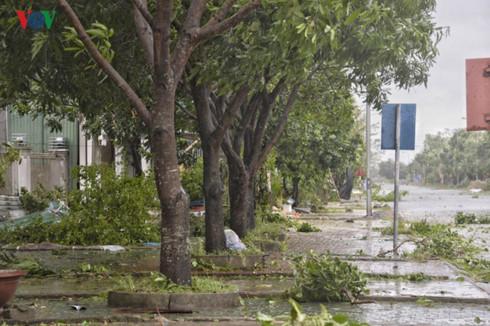 coastal provinces battle with storm doksuri hinh 0