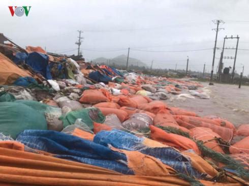 coastal provinces battle with storm doksuri hinh 1