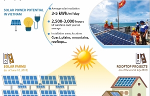 first 35mw solar power plant in vietnam goes online