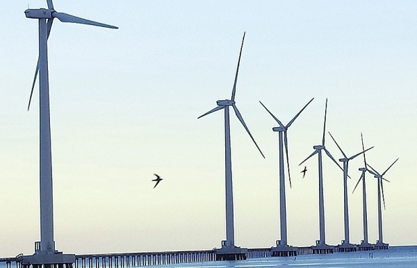 foreign investors seek ma deals in renewables