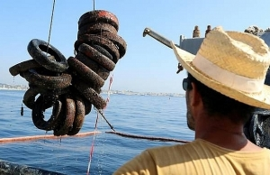 france reverses car tyre sea sanctuary an environmental flop