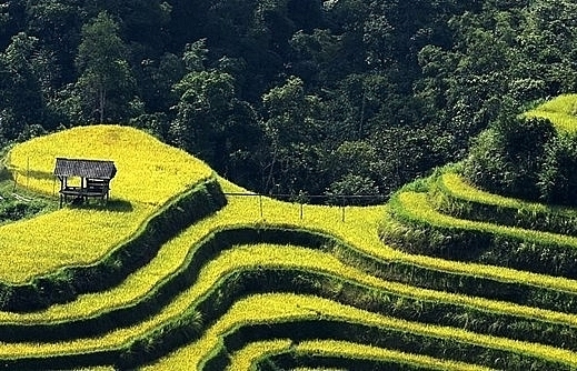 cultural tourism festival kicks off in ha giang