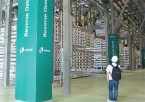 singaporean firms show way ahead
