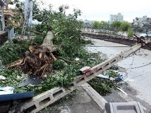 northern region repairs typhoon damage