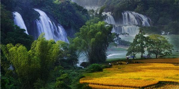 Cao Bang, Ban Gioc Waterfall Tourism Complex, waterfall festival, Vietnam economy, Vietnamnet bridge, English news about Vietnam, Vietnam news, news about Vietnam, English news, Vietnamnet news, latest news on Vietnam, Vietnam