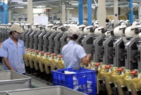 VITAS recommends removing tariffs on polyester fibre