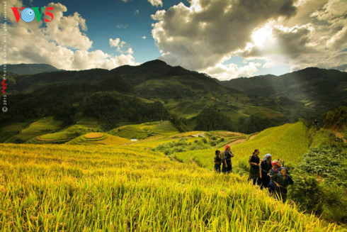 homestay service offers sustainable tourism