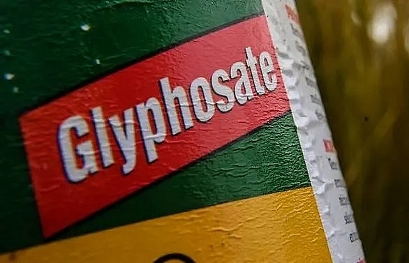 thailand to ban glyphosate and other high profile pesticides