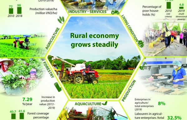 rural economy grows steadily infographics