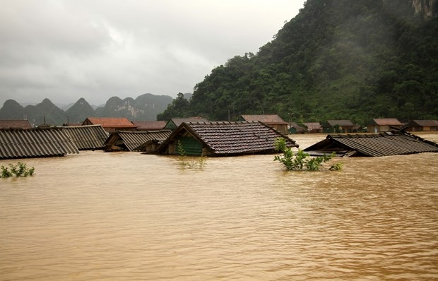 central steering committee urges continued actions in response to floods in central region